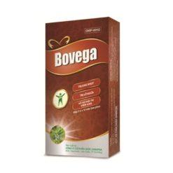 thuốc đông dược Bovega bảo vệ giải độc hỗ trợ điều trj viêm gan hộp 30 viên