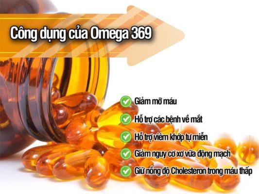 Omega 369 dầu hạt lanh cung cấp acid béo từ thực vật nhiều công dụng khác nhau
