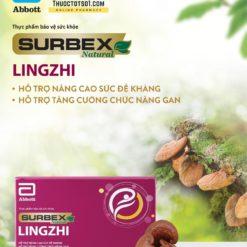 viên linh chi Surbex Lingzhi hỗ trợ nâng cao đề kháng & chức năng gan chính hãng Abbott